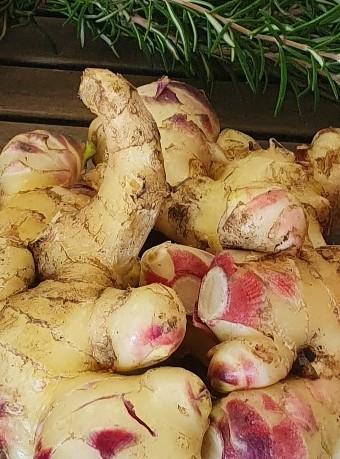 Frische Vitamine in der kalten Jahreszeit aus der SB-Gemüsehütte!